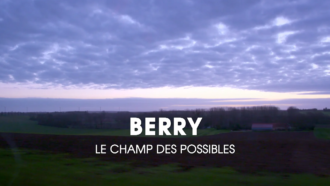 Berry : the field of possibilities 19